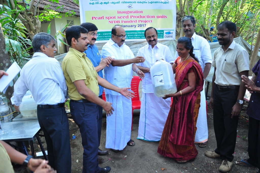 Prof.K.V.Thomas, MP inaugurating the pearlspot seed production unit.JPG