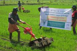Power-weeder-operation-in-Paddy-field
