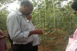 Quality-control-in-Farmer-participatory-seed-production-in-farmers-field